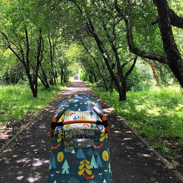 фото прогулочной коляски Косатто Fly
